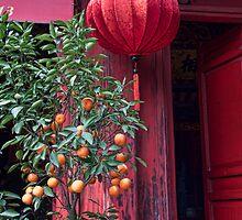 Vietnam. Hanoi. At the Temple on Hoan Kiem Lake. by vadim19