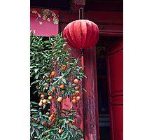 Vietnam. Hanoi. At the Temple on Hoan Kiem Lake. Photographic Print