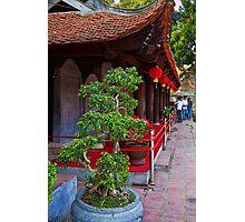 Vietnam. Hanoi. At the Temple of Literature. Photographic Print