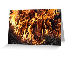Fire in the forest Greeting Card