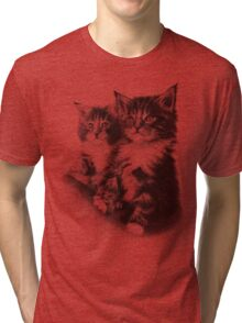 Double Dose of Cuteness Tri-blend T-Shirt