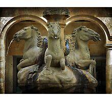 A fonte dos cabalos Photographic Print