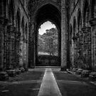 Kirkstall Abbey  by Tim Waters