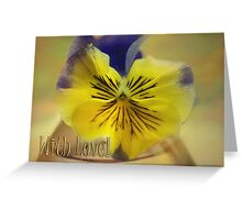 Beautiful Pansy & With Love text Greeting Card
