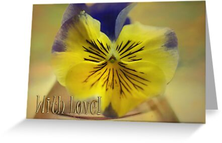 Beautiful Pansy & With Love text by walstraasart