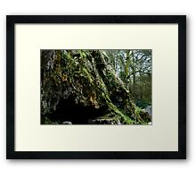 Mossy cave Framed Print