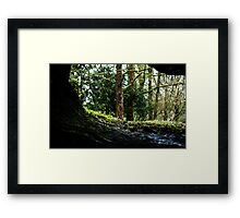 On the Inside Looking Out Framed Print