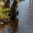 Tire on the Stream by JoeyKleisinger