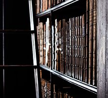 Trinity Bookshelf by JoeyKleisinger