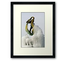Saint James Court 2010 - Frozen Fountain Framed Print