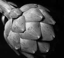 Study of an Artichoke - Three by Sami Wong