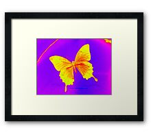 butterfly photograph from London Framed Print