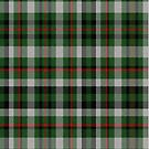 02353 Oakland County, Michigan District Tartan Fabric Print Iphone Case by Detnecs2013