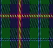 10011 Young Clan Tartan Fabric Print Ipad Case by Detnecs2013