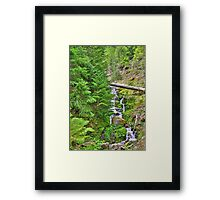 no name creek Framed Print
