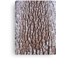 bark abstract Canvas Print