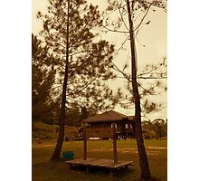 House of Bengkirai Forests Borneo Photographic Print