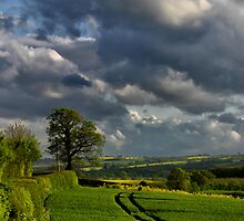 Approaching Storm by Rob Meredith