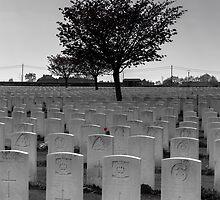 War Graves, Belgium by Mandy  Harvey