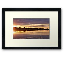 Swan Lake Framed Print