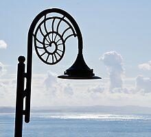 Lighting Up The Ocean by Susie Peek