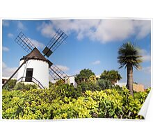 windmill in Lanzarote Poster