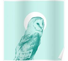 Wise Blue Owl Poster
