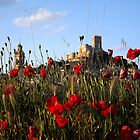 castle with poppies by dedakota