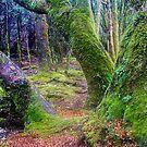 Enchanted greens by bluetaipan