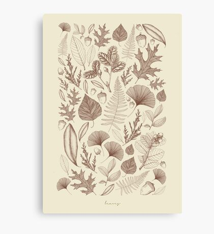 Study of Growth  Canvas Print
