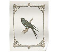 A Victorian Bird Poster