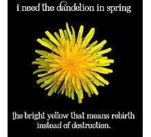 I Need the Dandelion in Spring Photographic Print