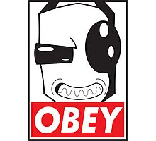 Obey Zim Photographic Print