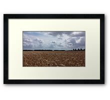 Danish landscape Framed Print