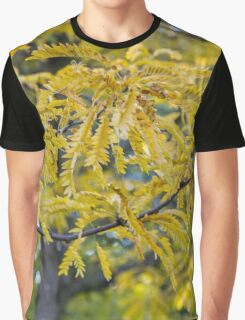 tree in the park in autumn Graphic T-Shirt