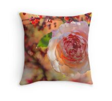 rose after the rain in the garden Throw Pillow
