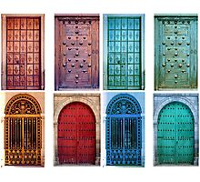 Vintage doors Photographic Print