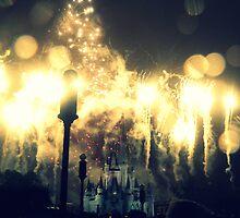The magic kingdom by Amy McCabe