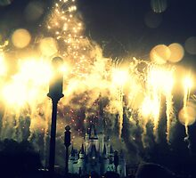 The magic kingdom by Amy McCabe