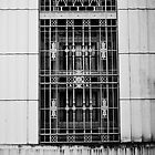 Window Grate by Ron Hannah