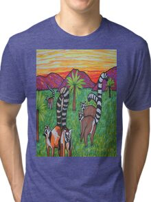 Lemurs in the grass Tri-blend T-Shirt
