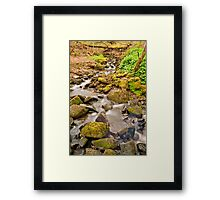 Babbling Brook Framed Print