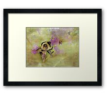 The Beauty of Nature At Work Framed Print