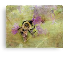 The Beauty of Nature At Work Canvas Print