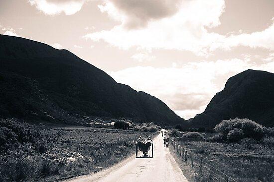 Towards the Gap of Dunloe by Pauline Mason