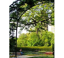 Central Park Conservatory Garden, New York City  Photographic Print
