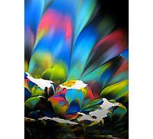 PARADISE FLOWER Photographic Print