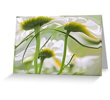 Wind Swept Greeting Card