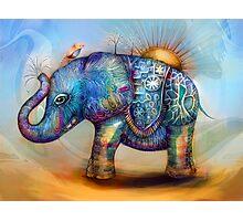 magic rainbow elephant Photographic Print