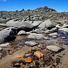 Rocky Plateau by Harry Oldmeadow